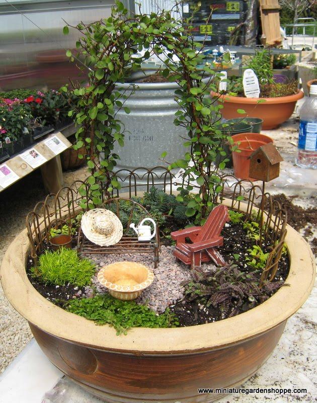Una de jardines blog adoraideasblog adoraideas for Bonsai comprare