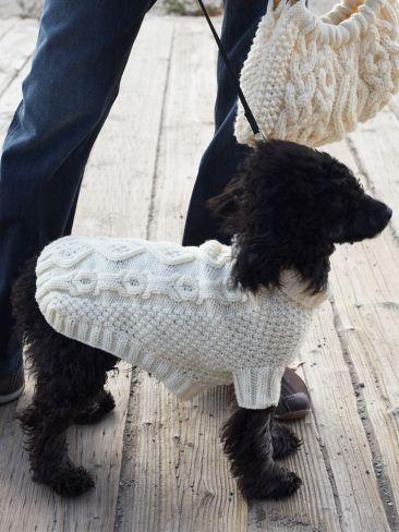 ropa mascota hand made
