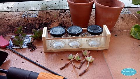 suculentas-cactus-reciclaje-terrario-adoraideas-1